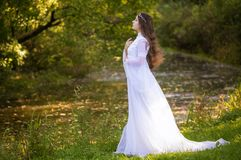Princess with long hair. In white long dress Stock Photography