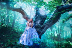 Princess in magic forest. Princess in vintage dress walking in magic forest Stock Image