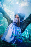 Princess in magic forest Stock Photos