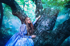 Princess in magic forest Stock Photography