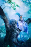 Princess in magic forest Stock Images