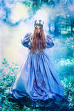 Princess in magic forest. Princess in vintage dress walking in magic forest Royalty Free Stock Photos