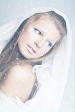 princess śnieg Obrazy Stock
