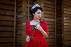 Princess w czerwonej sukni zdjęcie royalty free