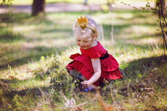 Princess in the woods Stock Photos