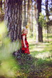 Princess in the woods Royalty Free Stock Image