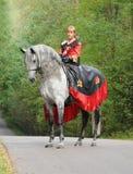 Princesse sur le cheval photographie stock libre de droits