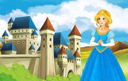 The princesses - castles - knights and fairies - Beautiful Manga Girl - illustration for the children Stock Images