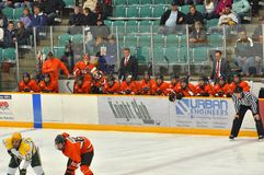 Princeton #1 in NCAA Hockey Game Royalty Free Stock Photos