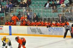 Princeton #1 in NCAA Hockey Game Royalty Free Stock Photos