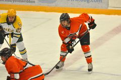 Princeton #15 en match de hockey de NCAA Photographie stock