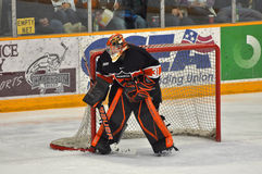 Princeton Goalie Sean Bonar in NCAA Hockey Game Royalty Free Stock Photography