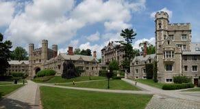Princeton universitet, USA Arkivfoto