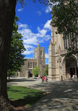 Princeton University 2. The view from Princeton University Campus. The background buildings are Firestone Library and Chapel Royalty Free Stock Photo