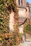 Princeton University in autumn Stock Images