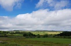 Princetown, parco nazionale di Dartmoor Immagini Stock Libere da Diritti