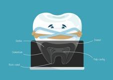 Principale canale dentario illustrazione vettoriale