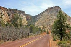 Principale cuvette de route le paysage et les montagnes colorés de Zion National Park, Etats-Unis Photos stock
