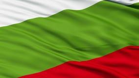 Principality of Ongal Micronation Close Up Waving Flag stock footage