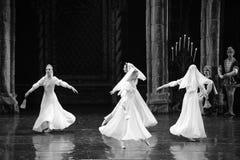 Principe bianco della gonna- lago swan di atto-balletto del mitzvah- della barra del terzo fotografie stock libere da diritti
