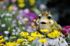 Principe Frog Fotografia Stock Libera da Diritti