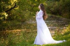 Principessa con capelli lunghi fotografia stock