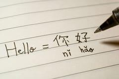Principiante de lengua china del principiante que escribe la palabra Nihao del hola en caracteres chinos y el pinyin en un cuader fotos de archivo