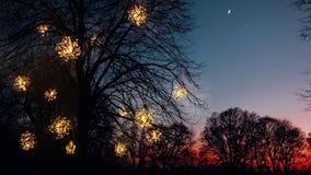 A principios de enero puesta del sol Foto de archivo