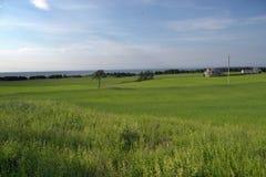 Prins Edward Island Farm Land royaltyfri bild