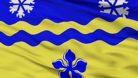 Prins George City Flag, de Britse Colombia Provincie van Canada, Close-upmening Royalty-vrije Illustratie