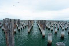 Prinsenpijler, Haven Melbourne, Australië Stock Foto's