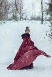 Prinses in een rode mantel in de sneeuw stock fotografie