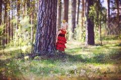 Prinses in het hout Stock Afbeelding