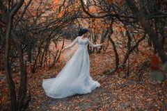 Prinsessa i en grym höstträdgård royaltyfria bilder