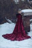Prinsessa i en röd kappa i snön royaltyfria foton