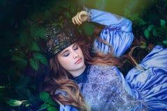 Prinsessa i magisk skog arkivfoton