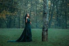 Prinsessan med den kungliga kappa-klänningen för röd lång sammet för hår iklädd grön dyr, flicka fick förlorad i den mörka dimmig royaltyfria foton