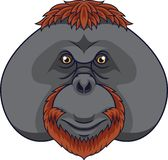 Cartoon orangutan head mascot vector illustration