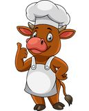 Cartoon happy cow chef giving thumbs up vector illustration