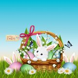 Three Easter bunny in grass with wicker basket and colorful eggs stock photos