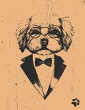 Portrait of Havanese in suit. Hand drawn illustration of dog. Vector. Hand drawn illustration of animal vector illustration