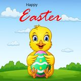 Cartoon little chick holding easter egg with background royalty free illustration