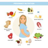 Infographic nutrition of a pregnant woman. stock illustration
