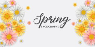 Spring background with beautiful flower. Illustration of Spring background with beautiful flower royalty free illustration