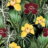 Tropical jungle plants, yellow burgundy orchid flowers and palm monstera leaves on black background. stock illustration