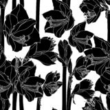 Amaryllis hippeastrum lilly flower branch black and white outline sketch seamless pattern. Spring floral bouquet foliage element. stock illustration