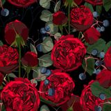 Illustration of red flowers, berries and eucalyptus. Seamless pattern of roses and herbs on black background. royalty free illustration