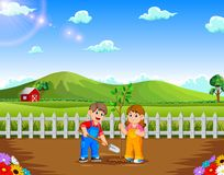Boy and Girl planting tree in the park. Illustration of Boy and Girl planting tree in the park royalty free illustration