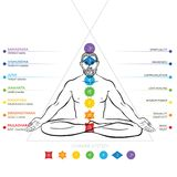 Chakras system of human body - used in Hinduism, Buddhism and Ayurveda. Man in padmasana - lotus asana. royalty free illustration