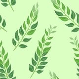 Leaves on a green background. Botanical seamless pattern. royalty free illustration